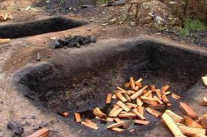 საგარეჯოში ათამდე სანახშირე ორმო აღმოაჩინეს