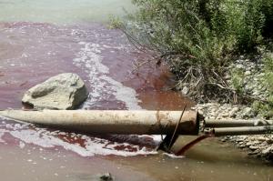 ახალციხის სასაკლაო, რომელიც მდინარეში სისხლს ღვრიდა, 1000 ლარით დაჯარიმდა