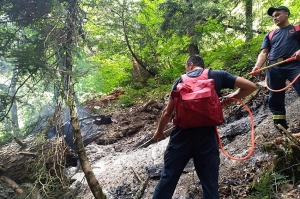 მეხის ჩამოვარდნის შედეგად ონის ტყეში ხანძარი გაჩნდა
