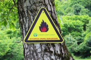 რა ადგილებზეა აკრძალული ტყეში ცეცხლის დანთება