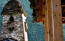 თუშეთის დაცული ლანდშაფტის ტყეების ინვენტარიზაცია ჩატარდება