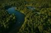 კოლხური ტყეები და ჭაობები UNESCO-ს მსოფლიო მემკვიდრეობის სიაში შევიდა